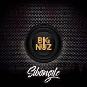 Big Nuz - Sibongile artwork