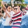 Vivo Pensando en Ti - Single, Felipe Peláez & Maluma