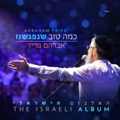 כמה טוב שנפגשנו - Avraham Fried