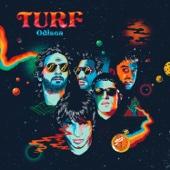 Contacto - Turf