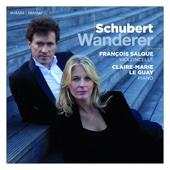 Schubert: Wanderer
