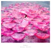 Ref:rain / 眩いばかり - EP ジャケット画像