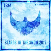 The Bearded Man: Beards in the Snow 2017 - Various Artists
