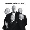 31. Greatest Hits - ピットブル