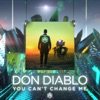 Don Diablo - You Can't Change Me (Radio Edit)