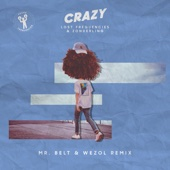Lost Frequencies & Zonderling - Crazy (Mr. Belt & Wezol Remix) artwork