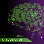 Natural Brain Stimulation: Music for Mental Ability, Concentration, Study, Better Memory, Heal Your Mind, Stress Relief Sounds and Relaxing Melody, Piano, Cello, Violin Music