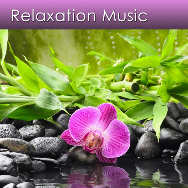 Relax Deeply and Reduce Stress Now