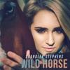 Wild Horse - Single