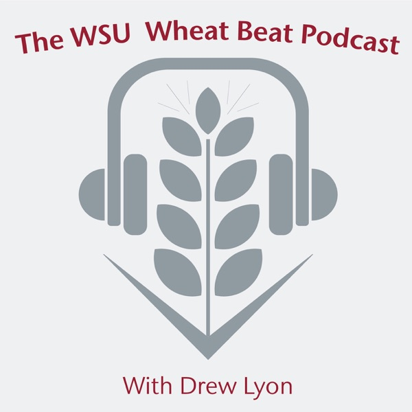 Podcast – Wheat & Small Grains