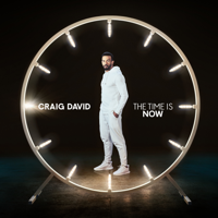 The Time Is Now (Deluxe), Craig David