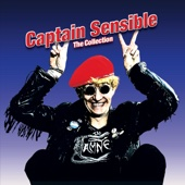 Captain Sensible - (What d'Ya Give) The Man Who's Gotten Everything artwork