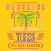 TIEKS - Sunshine (feat. Dan Harkna) [Radio Edit] artwork