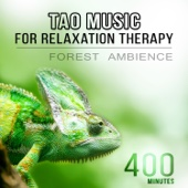Tao Music for Relaxation Therapy: Best Meditation Songs, Forest Ambience, Sleep Medicine, Healing Spirit of Buddha, Nature Sounds for Zen Journey