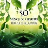 50 Música de Curación: Terapia de Relajación, Zen Meditación, Clases de Yoga y Reiki, Alivio del Estrés y Serenidad