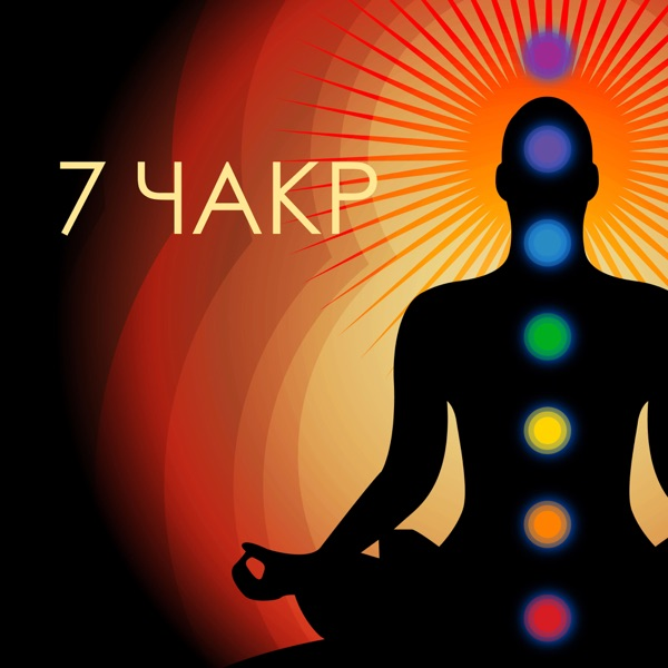 Exploring the Seven Major Chakras of the Human Body