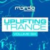 Uplifting Trance, Vol. 6