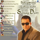 Bollywood Collection of Sanjay Dutt - Various Artists