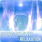 Sounds for Sleep & Relaxation – Music Therapy to Cure Insomnia, Relaxing Rain Ambience & Ocean Waves - Peaceful Sleep Music Collection