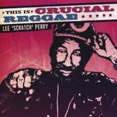 """Scratch the Dub Organizer - Lee """"Scratch"""" Perry"""
