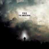 The Awakening - P.O.D.