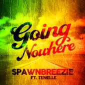 Going Nowhere (feat. Tenelle)
