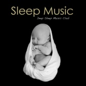 Sleep Music: Relaxation Piano Sleeping Songs & New Age Lullaby Slow Sleep Music Soundscapes