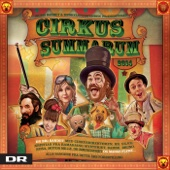 Cirkus Summarum 2014