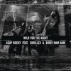 Wild For the Night (feat. Skrillex & Birdy Nam Nam) - Single, A$AP Rocky