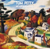 Tom Petty & The Heartbreakers - Learning to Fly bild