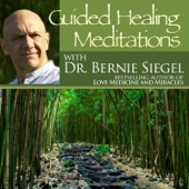 Guided Healing Meditations With Bernie Siegel - Single