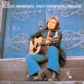 Van Morrison - Saint Dominic's Preview  artwork