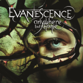 Download Evanescence - Missing