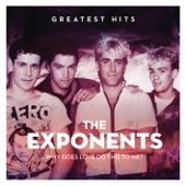 Why Does Love Do This To Me: The Exponents Greatest Hits - The Exponents
