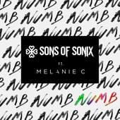 Sons of Sonix - Numb (feat. Melanie C)  arte
