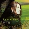 Evergreen - Shizu Takeshita, Shizu Takeshita