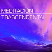 Control Mental (Mindfulness)