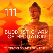 Buddhist Charm of Meditation: Healing Flute Chakras for Awakening of the Soul, Energy to Heal Body and Mind, Yoga Music for Yoga Class - 111 Tracks Sounds of Nature