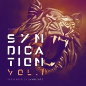 Syndicate - Sounds of Syndication, Vol. 1 (Presented by Syndicate) artwork