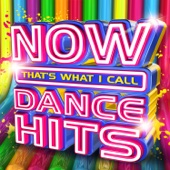 Various Artists - Now That's What I Call Dance Hits artwork