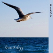 Ornithology cover art