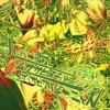 Hyper Gore Musasabistic Desapiari Genyas - Single