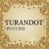 Turandot, Puccini