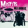 Walk Among Us, The Misfits