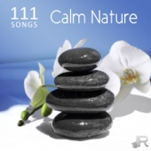 111 Songs Calm Nature, Relaxing Ocean Waves - Deep Zen Meditation Music with Vibrational Healing, Ambient Sleep Music, Massage, Yoga and Spa - Various Artists