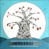 Somerkersfees
