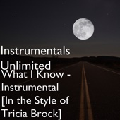 What I Know (Instrumental Karaoke Version) [In the Style of Tricia Brock]