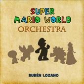 Super Mario World Orchestra