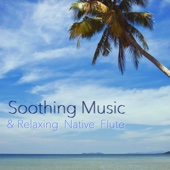 Gentle Water Sound and Native Flute