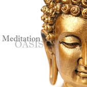 Meditation Oasis 50 Tracks - Deep Meditation, Sounds of Nature & Relaxing Music for Sleep, Study, Healing and Spa